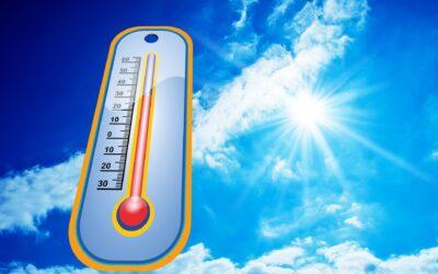 Sommerhitze: Was kann ich tun als pflegende(r) Angehörige?